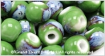 Porcelain Beads - Green