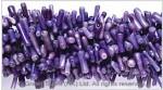 Purple Bamboo Coral