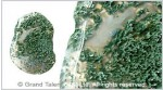 Moss Agate Pendant