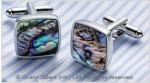 Abalone Paua Shell Brass Designer Cufflinks