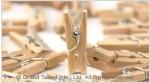 Mini Wooden Pegs Craft
